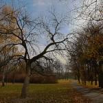 2012-11-10-hdr_1889