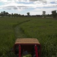 2013-05-31-IMG_1898